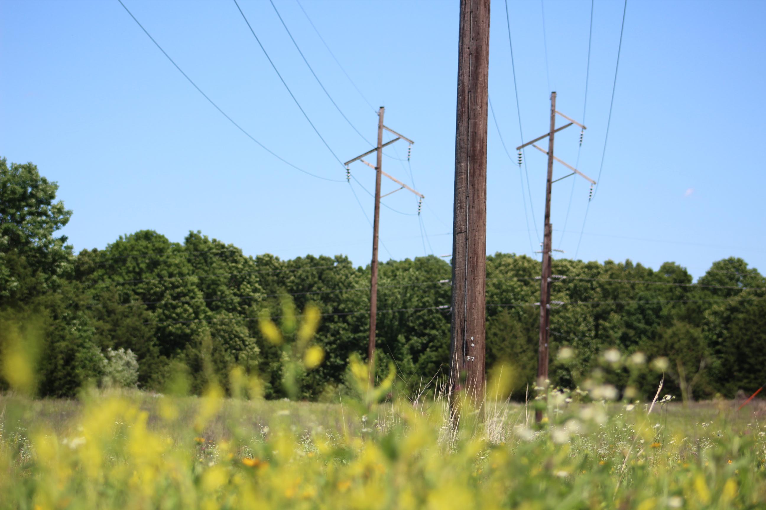 https://northeast-power.coop/sites/northeastpower/files/revslider/image/IMG_7975.JPG